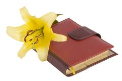 Blossom yellow lily flower and notebook Stock Photography