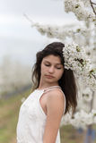 Blossomed cherry tree and beautiful girl Royalty Free Stock Images
