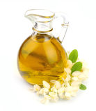 Blossoming акация с маслом стоковые изображения