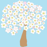 Blossoming apple tree. On blue background Stock Photos
