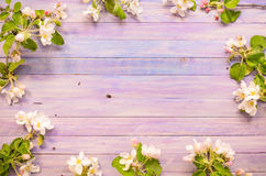 Blossoming apple tree on a wooden background, Blank template Royalty Free Stock Photography