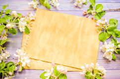 Blossoming apple tree on a wooden background, Blank template Stock Images