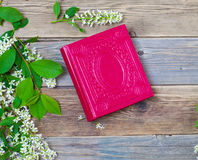 Blossoming bird-cherry and vintage album Stock Photography