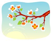 Blossoming branch Royalty Free Stock Images