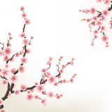 Blossoming branch of sakura. EPS 10. Blossoming branch of sakura - Japanese cherry tree. Beautiful cherry blossom pink flower. EPS 10 vector file included stock illustration