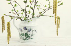 Blossoming branches of birch and cherry. In a vase stock image