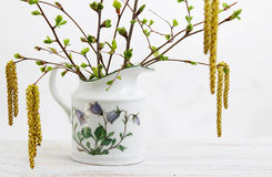 Blossoming branches of birch and cherry. In a vase royalty free stock image