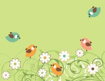 Blossoming branches and birds Stock Photography