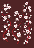 Blossoming cherry branches. Background. The pattern of the branches of cherries on brown background Royalty Free Stock Images