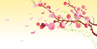 Blossoming cherry - Illustration Stock Images