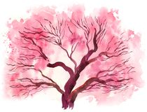 Blossoming cherry tree. Watercolor painting of a blossoming cherry tree Stock Image