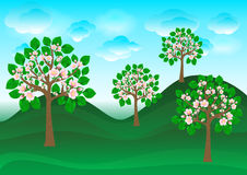Blossoming cherry trees on a green lawn. Illustration of blossoming cherry trees on a green lawn Stock Photography