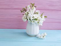 Blossoming cherry springtime vase bouquet colorful wooden background stock photography
