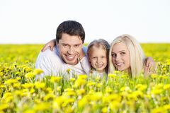 In the blossoming field Royalty Free Stock Photography