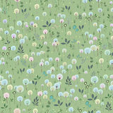 Blossoming Field Royalty Free Stock Images