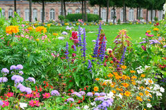Blossoming flowerbeds Royalty Free Stock Photos