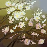 Blossoming flowers of a cherry tree on a colored background. Blooming cherry Stock Images