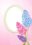 Blossoming frame Royalty Free Stock Photography