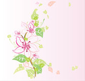 Blossoming garden Royalty Free Stock Photos