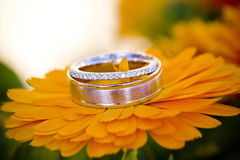 Blossoming Love. Beautiful diamond ring and wedding band resting on a gold colored blossom Royalty Free Stock Photos