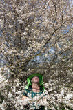 Blossoming plum and beekeeper. royalty free stock images