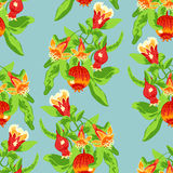 Blossoming pomegranate fruits. Seamless pattern tree branch with blossoming pomegranate fruits on blue background Royalty Free Stock Photos