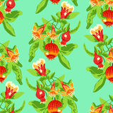 Blossoming pomegranate fruits. Seamless pattern tree branch with blossoming pomegranate fruits on green background Royalty Free Stock Photos