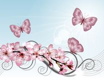 Blossoming sakura cherry branch with pink flowers Stock Images