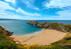 Blossoming sunshiny ocean coastline landscape. Sandy beach (Spain) Atlantic Ocean sunshiny coastline landscape Royalty Free Stock Images