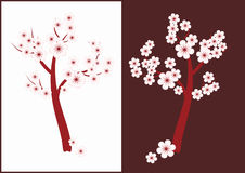 Blossoming tree. Illustration. Blossoming delicate pink flowers on the tree of white and brown background Stock Images