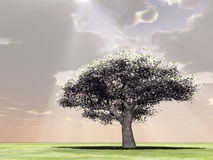 Blossoming tree in the god rays. 3d image Stock Illustration