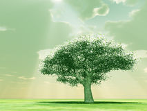 Blossoming tree in the god rays. 3d image Stock Photography
