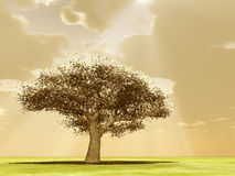 Blossoming tree in the god rays. 3d image Vector Illustration