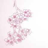 Blossoming tree line art hand drawing illustration Stock Image