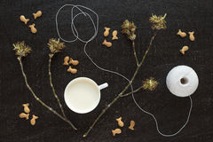 Blossoming twigs, milk, cotton skein and cookies Stock Photos