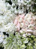 Blossoming white, pink, and green flowerbed of ranunculus, hydrangea, lilac. Top view, close up royalty free stock image