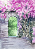 Blossoming wisteria garden over the wall with a gate Stock Image