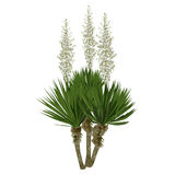 The blossoming yucca plant. Large plant of a yucca Yucca filamentosa with flowers Stock Photography