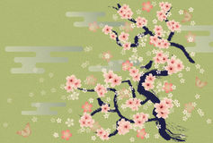 Blossoms. This graphic is japanese flower Stock Images