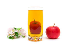 Blossoms of apple, a glass of juice and apple on a white backgro Stock Image
