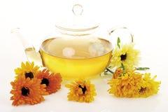 Blossoms of calendulas (Calendula officinalis) and teapot, close-up Royalty Free Stock Images