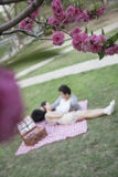 Blossoms in the foreground and young couple lying on a blanket having a picnic blurred in the background Stock Image