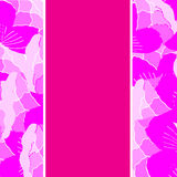 Blossoms frame on the pink background Stock Image
