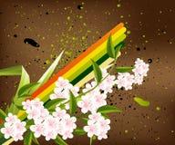 Blossoms Illustration Stock Photo