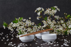 Blossoms in small dish Royalty Free Stock Image