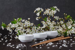 Blossoms in small dish Royalty Free Stock Photos