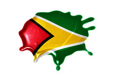 Blot with national flag of guyana. On the white background Royalty Free Stock Images