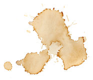 Blots of coffee royalty free stock photography