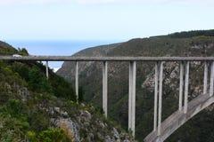 Bloukrans Przerzuca most, natury ` s dolina, Zachodni przylądek, Południowa Afryka obraz royalty free