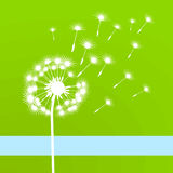 Blow ball. Nature peaceful, fragile stock illustration